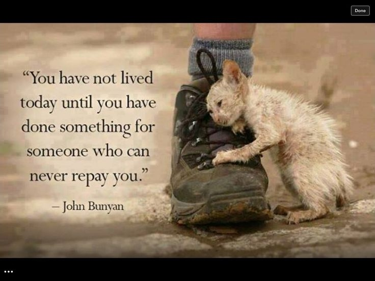helping-others-quote-4-picture-quote-1